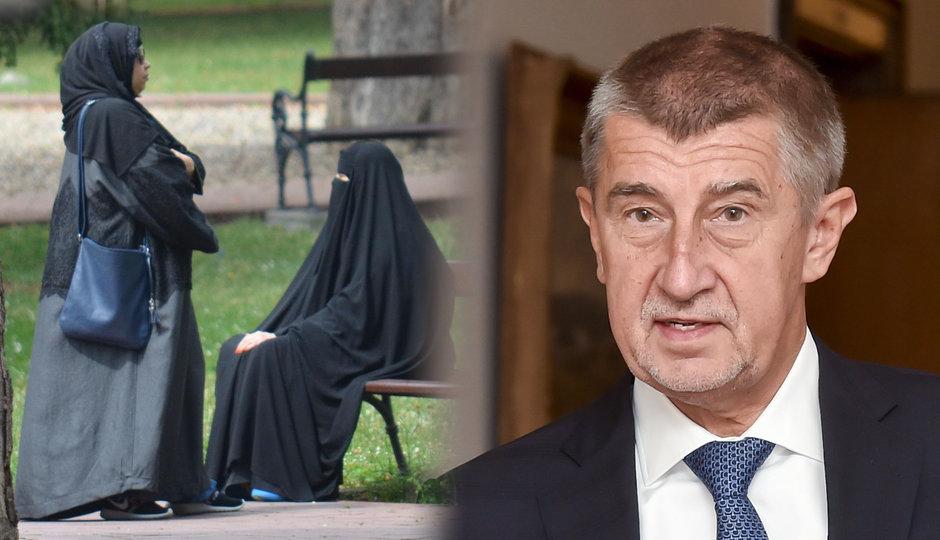 Při hádce s muslimy v Teplicích vytáhl muž pistoli. A Babiš odmítl vzít jednoho migranta z Itálie
