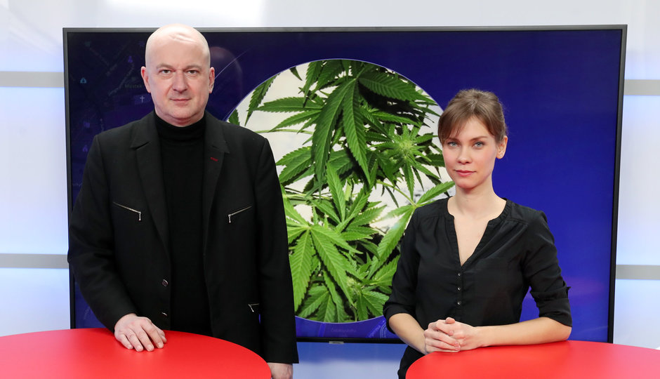 Adiktolog Zábranský: Konopí je prokazatelně léčivé, působí na celou řadu symptomů