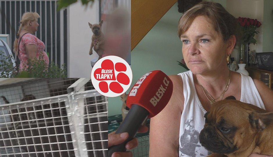 Psi v Dražkově trpí v klecích, množitelka na nich vydělává tisíce. Těží z nevědomosti
