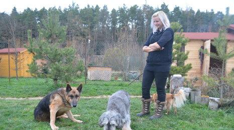 V útulku Rafael našel domov bývalý policejní pes Cir. Ve výslužbě ho týrali