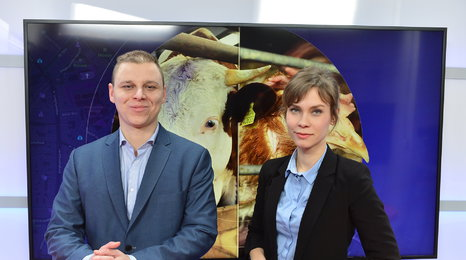 Ochránce zvířat: Závadné maso z Polska není ojedinělé, reportáže by odhalily víc případů i jinde