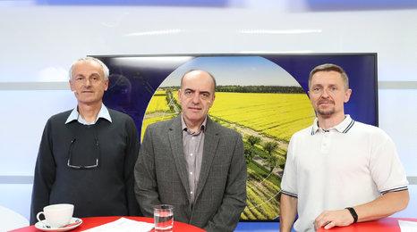 Přírodovědec: Pěstování řepky pro biopaliva je neekologické
