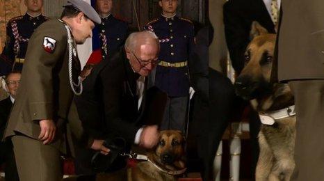 Pes Doky na Hradě a metál pro jeho mrtvého pána. Podívejte se, co dojalo Vladislavský sál