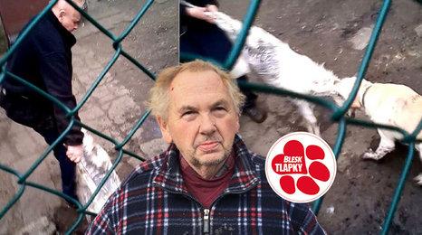 Boj se psy o kozlíka není trestný čin, rozhodli policisté. Případ řeší úřady