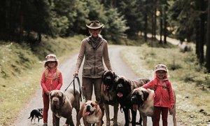 Rodina z Brna chová osmnáct psů všech různých ras