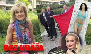 Bez urážky Zuzany Bubílkové: Co vyřeší smrad u Štikových?