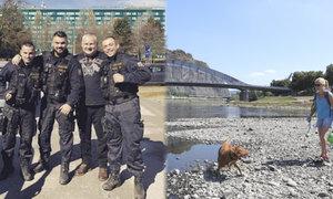 Za fotku s Kajínkem kázeňské tresty pro policisty. A Labe vysychá, dá se po něm chodit pěšky