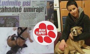 Týrá, mučí, zabíjí! Usvědčí tyranku z Budějovicka šokující video?