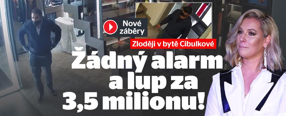 Zloději v bytě Cibulkové: Žádný alarm a lup za 3,5 milionu!