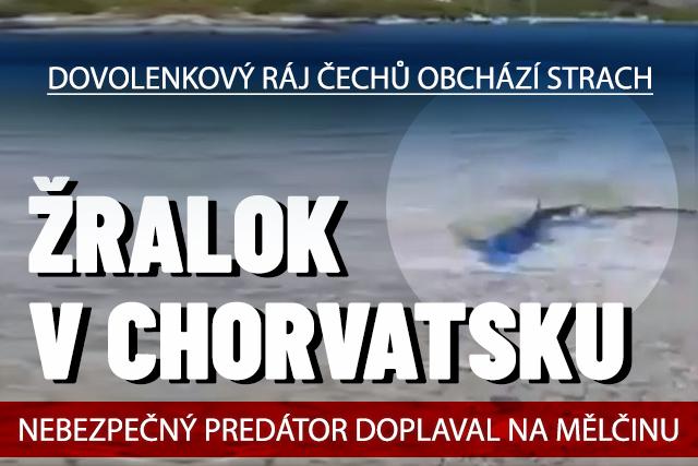 V Chorvatsku viděli žraloka! Plaval na mělčině u pláže