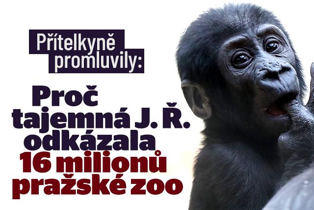Dárkyně odkázala Zoo Praha 16,7 milionu: Dojemný dopis