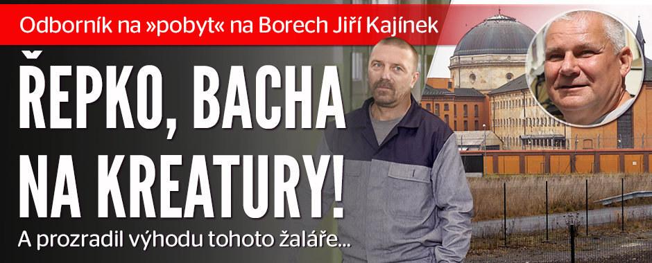 Kajínek radí Řepkovi, jak přežít na Borech: Bacha na kreatury!