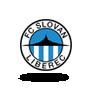 Liberec B